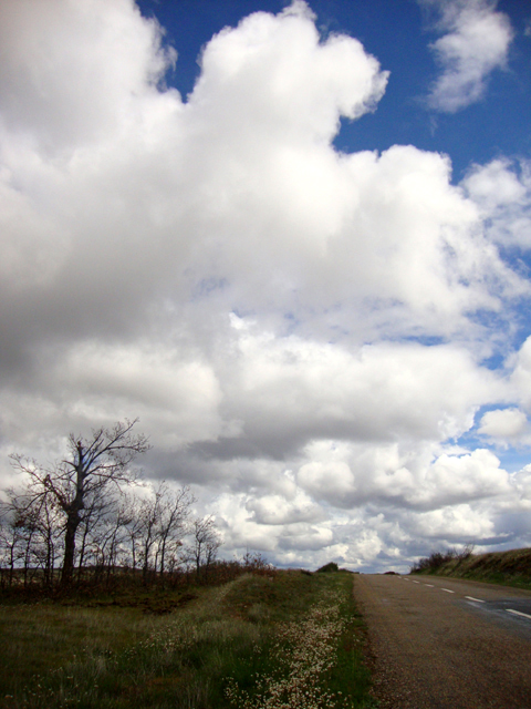 INSITU_AIREYAGUA_A040 - Caminos